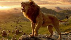 the-lion-king-fastzaban