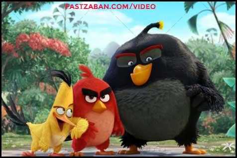 درباره Angry Birds 2016